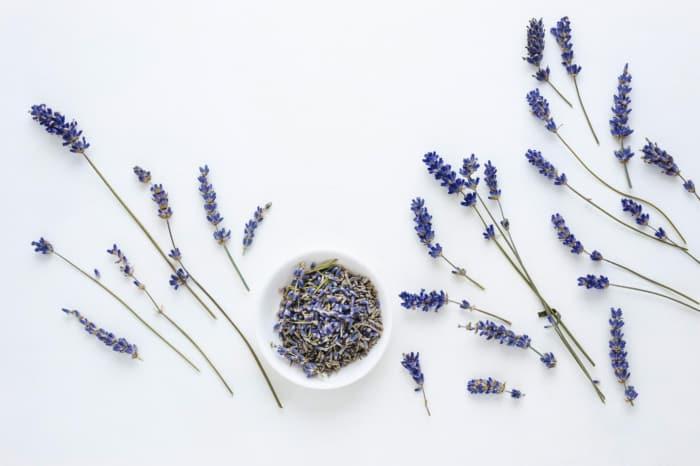 mulondon ingredients lavender 1